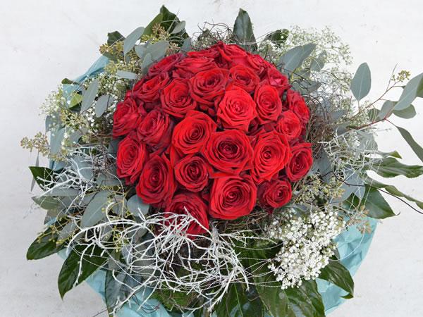 Einfach Rosen